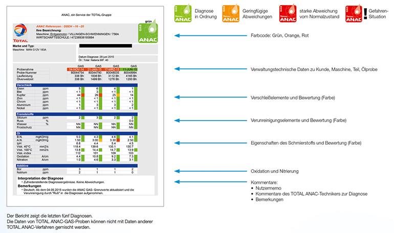 anac-diagnosebericht